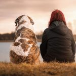 8-essential-tips-for-adopting-a-new-dog-pet-friend